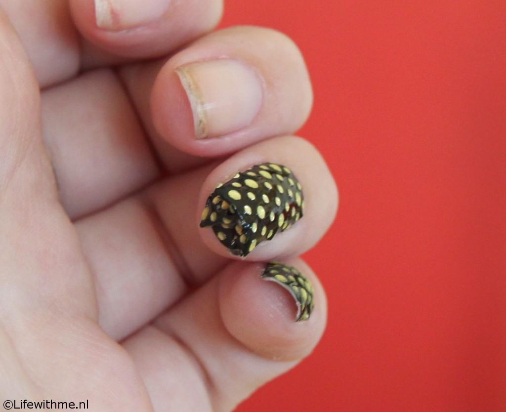 Hema nagelstickers omgevouwen